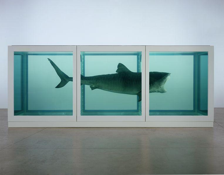 De tijgerhaai op formaldehyde van kunstenaar Damien Hirst.