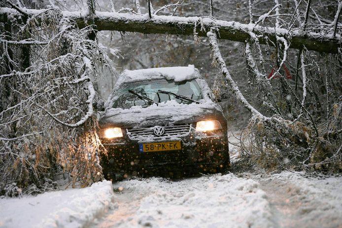 Hevige sneeuwval maakte dat bomen omknakten en het verkeer werd ernstig gehinderd.