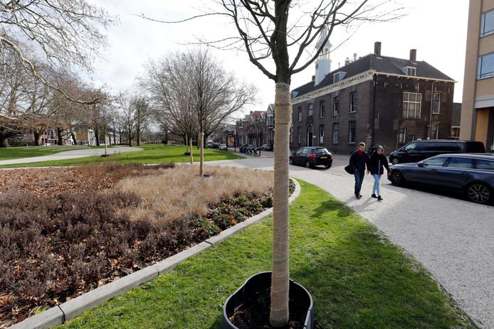 De Plantage in Schiedam