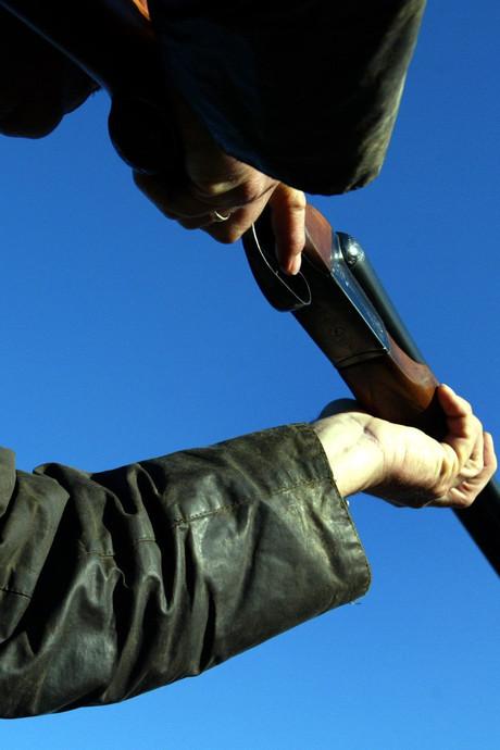 Vrij spel voor jagers in de Biesbosch