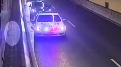 Kat overleeft verkeer in Sydney Harbour Tunnel