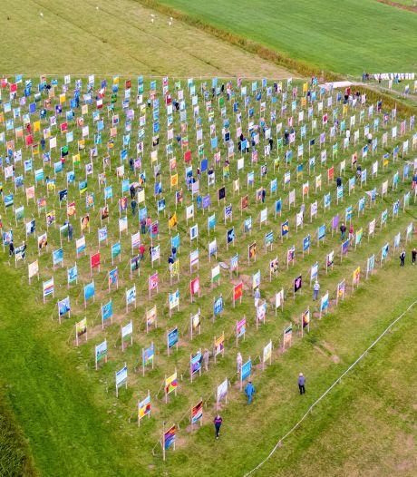 Evenemententerrein Park Lingezegen wordt één groot kleurrijk kunstwerk: 'Bezoekers ervaren dit als een openbaring'