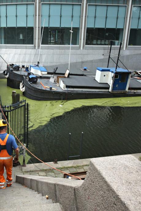 Tijd dringt voor zinkende Scheepjes in Rotterdamse Leuvekolk