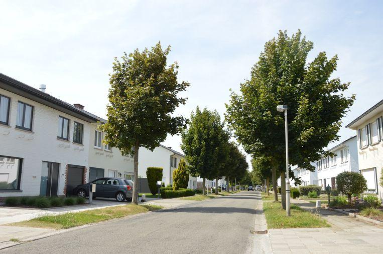 Onder meer in de Ter Duystlaan zal er een speelstraat worden ingericht.