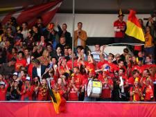 Médaille d'argent et de bronze pour la Belgique à l'Euro de parahockey