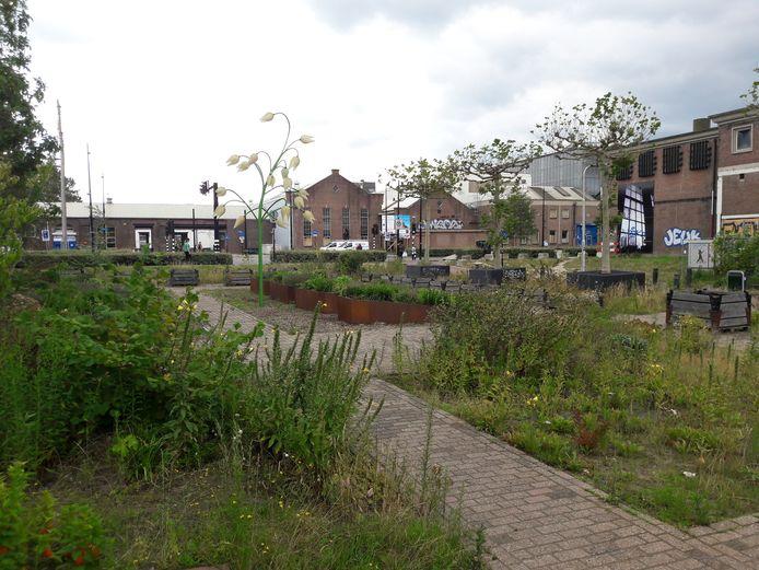 De entree van de wijk Theresia vanuit de Spoorzone, waar nu buurttuin Bij Ons Achter ligt, krijgt volgens wethouder Berend de Vries extra aandacht.