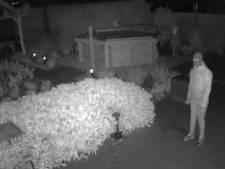 Inbreker valt van schrik van dak door alarm in Vaassen: wie is deze gemaskerde man?