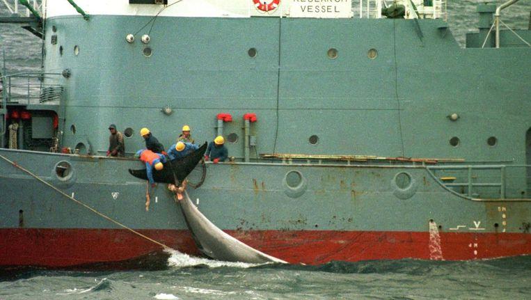 Walvisvaart in Japan Beeld epa