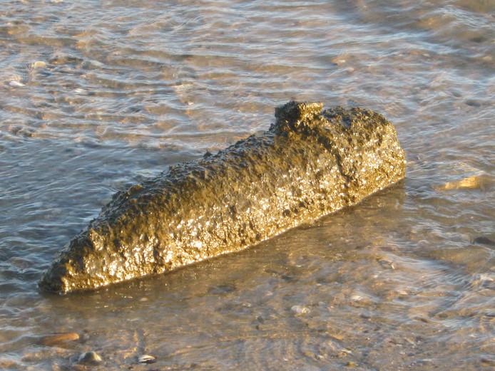 Het kleine explosief op het Waalstrandje in Lent