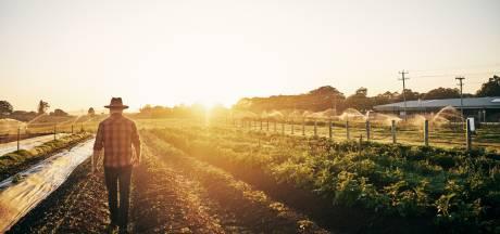 Twentse boer mag regels overtreden, als het maar duurzaam is