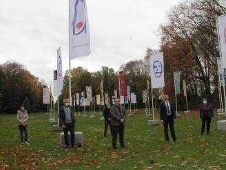 Honderd vlaggen wapperen voor kunstproject op domein Wallemote-Wolvenhof