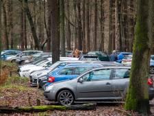 Natuurbeheerders zetten parkeerwachters en handhavers in om grote drukte in Veluwse bossen te begeleiden