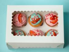 Achtste inbraak bij bezoekerscentrum Appelscha: 'Wat moet je met 12 dozen gebak?'