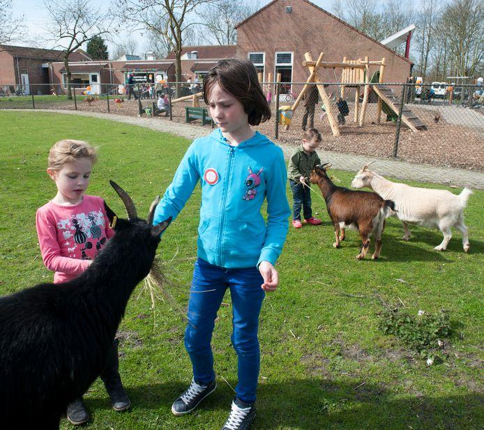 Kinderboerderij 'De Punt' in Zierikzee.