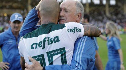 FT buitenland (25/11). Scolari pakt Braziliaanse titel met Palmeiras - Sevilla nieuwe leider in Spanje na zuinige zege tegen Valladolid