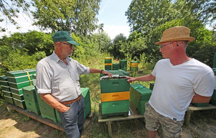 Bijenkasten Drie Keer In Drie Dagen Vernield Voorne Putten