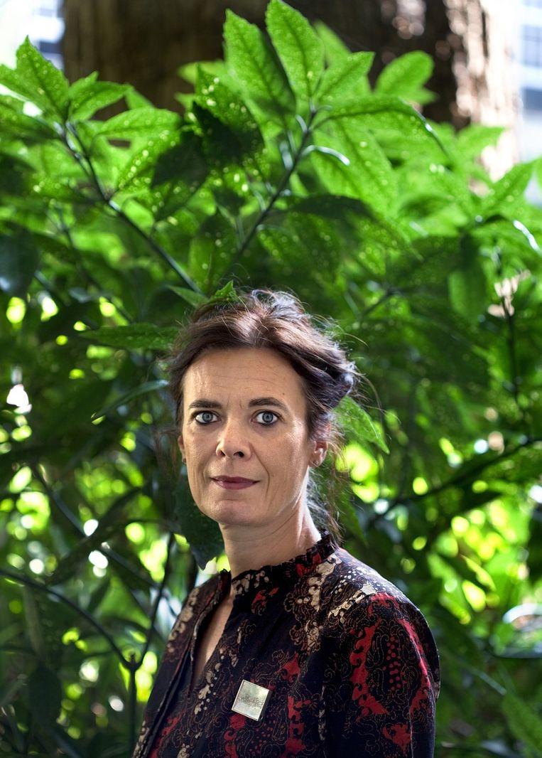 Louise Fresco. Beeld Guus Dubbelman / de Volkskrant