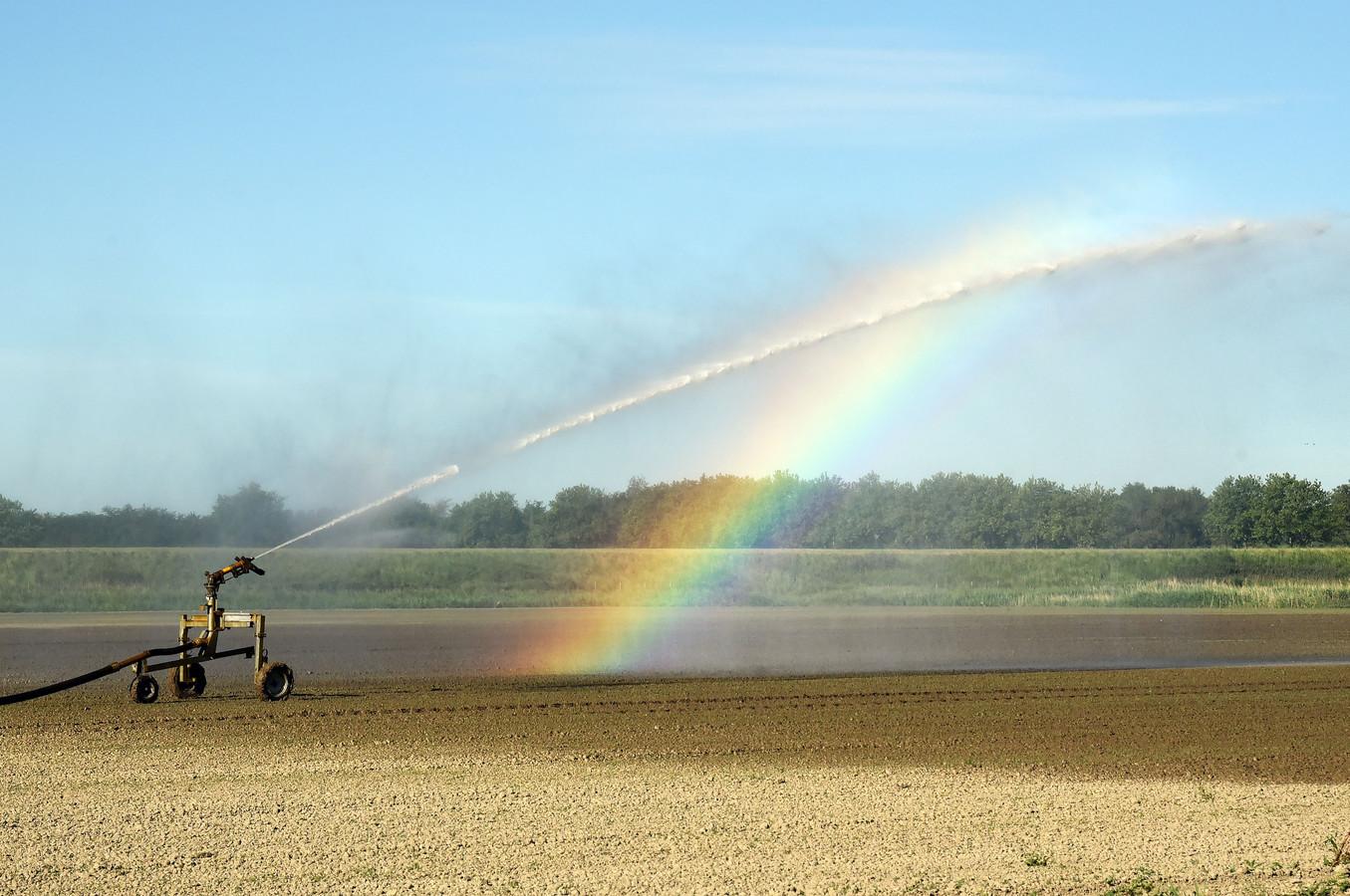Beregenen van een droge akker (archieffoto, dit is niet op Schouwen-Duiveland maar in Zeeuws-Vlaanderen)