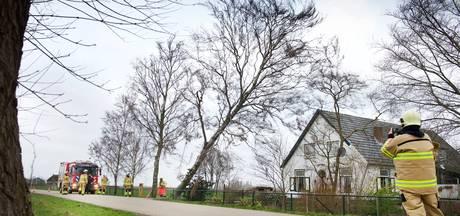 In Betuwe vooral bomen om door storm; weekmarkt afgelast