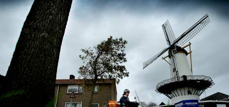 Eten voor Fikkie kan in Westmaas gehaald worden: Dierenwinkel Blijdorp maakt herstart in molen
