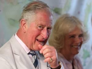 Le prince Charles se lance dans la mode avec une collection punk à base d'orties