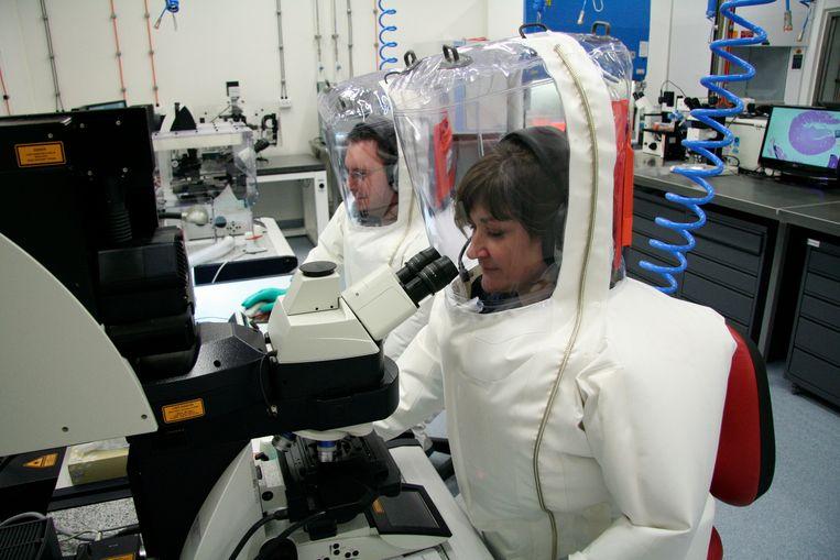 Wetenschappers in Australië proberen een vaccin tegen het coronavirus te ontwikkelen.
