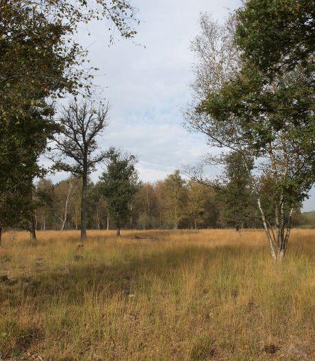 Veertien Gelderse natuurgebieden onder de loep: 'Er ligt een deken van gif over ons land'