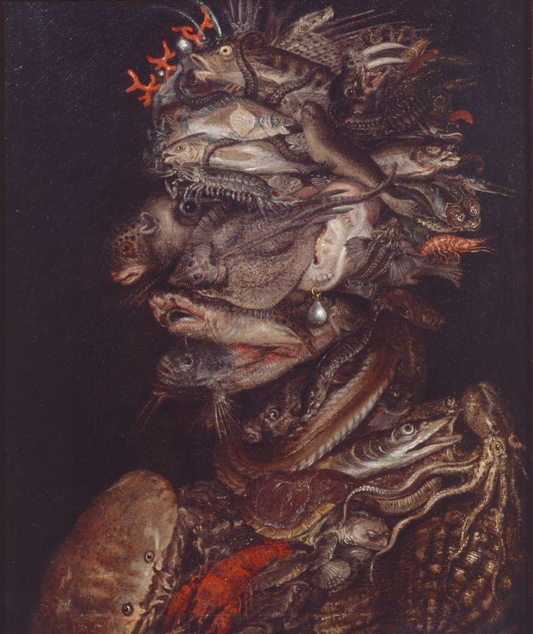 Giuseppe Arcimboldo (navolger), 'Water', 1566. Beeld Koninklijk Museum voor Schone Kunsten van België, Brussel