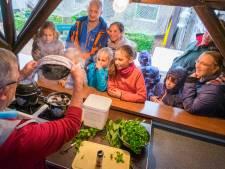 Nieuw festival Bruzzz met drie keer de Z van 'Zilte, Zeeuwse Zaligheden'