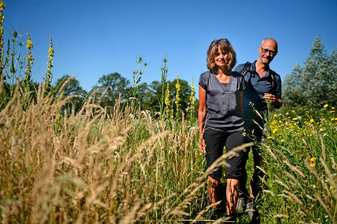 Monique Van Kessel en Ruud Velthuizen verkennen Berkelland wandelend.