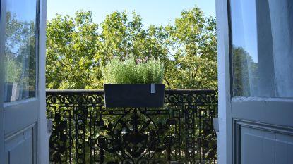 Groen wonen in de stad? Met deze tips verander je jouw balkon in een groene oase!