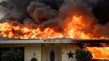 Wreedste bosbrand in geschiedenis van Californië: 250.000 mensen op de vlucht, 25 doden, 6.700 gebouwen verwoest