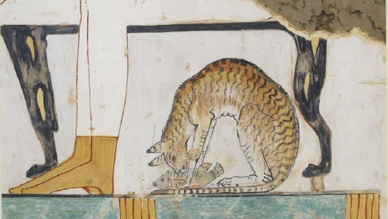 Een kattentekening uit het Oude Egypte. Beeld