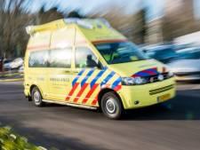 Meisje en paard gewond door harde val op straat in Rijsburg