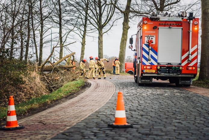 Op de doorgaande weg van Nederwetten naar Nuenen lag een grote boom op de weg.