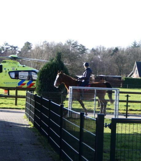 Persoon raakt zwaargewond na incident met paarden in Leersum