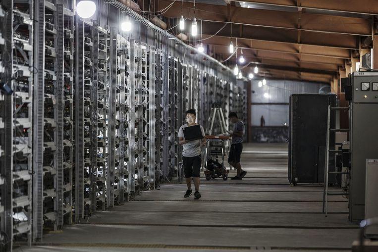 Technici inspecteren bitcoinproducerende computers in Chinees Mongolië.  Beeld Bloomberg via Getty Images