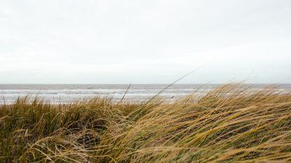 De pot op met wanderlust, geef mij maar de Ardennen of de kust