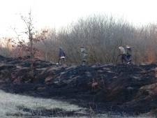 Kinderen ontdekken rietbrand in het Urkerbos