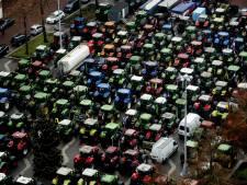 Ruim 500 varkensboeren melden zich voor uitkoopregeling