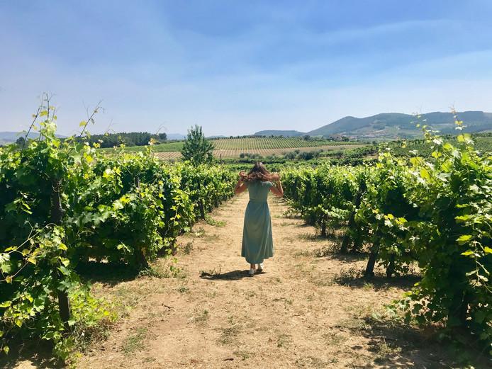 Fé de Ruijter bezoekt de wijngaard van een bekend porthuis in de Douro vallei.