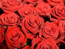 Hengelose stalker stuurt bos met 50 rozen vanachter de tralies