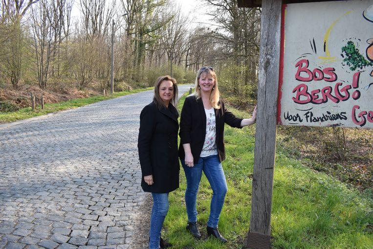 Het beheersplan komt dinsdag op de gemeenteraad in Geraardsbergen.
