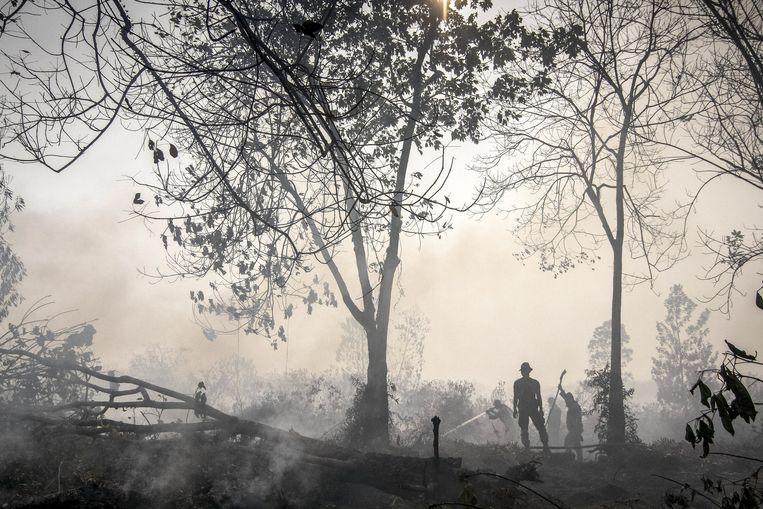 De rook bij de bosbranden in Indonesië Beeld reuters