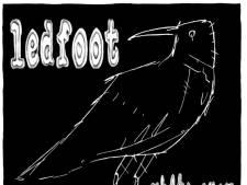 Ledfoot laat twaalfsnarige gitaar te veel overheersen