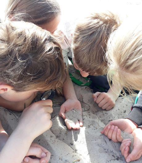 Bezuinigen op natuurlessen roept weerstand op in Soest