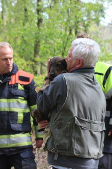 VIDEO: Hondje Toby uitgegraven na drie benarde uren in Helvoirts konijnenhol