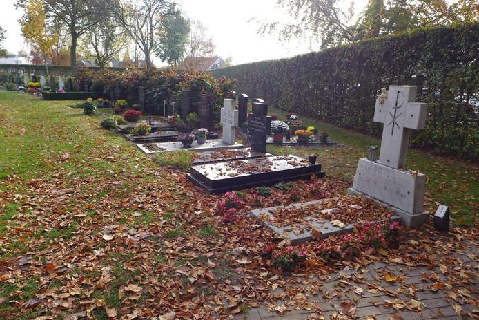 Herfstbladeren op de begraafplaats.
