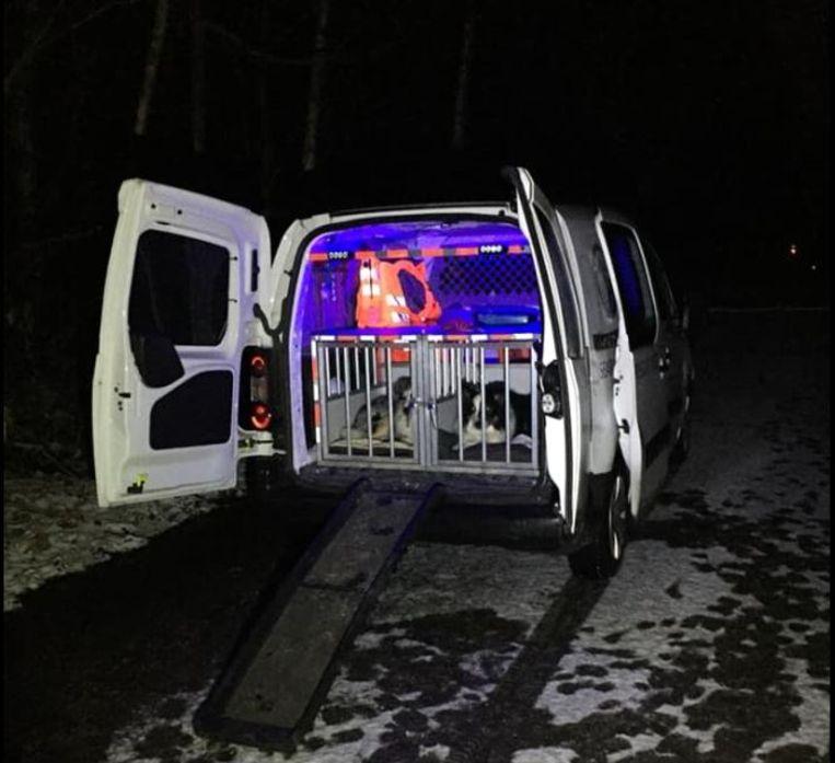 De man werd door een van de honden en zijn trainer aangetroffen in de sneeuw.