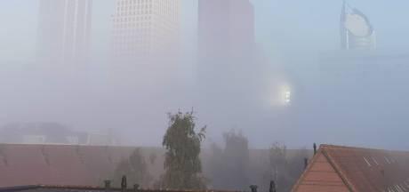 Verkeer moet vanochtend oppassen voor dichte mist: 'Wees extra alert'